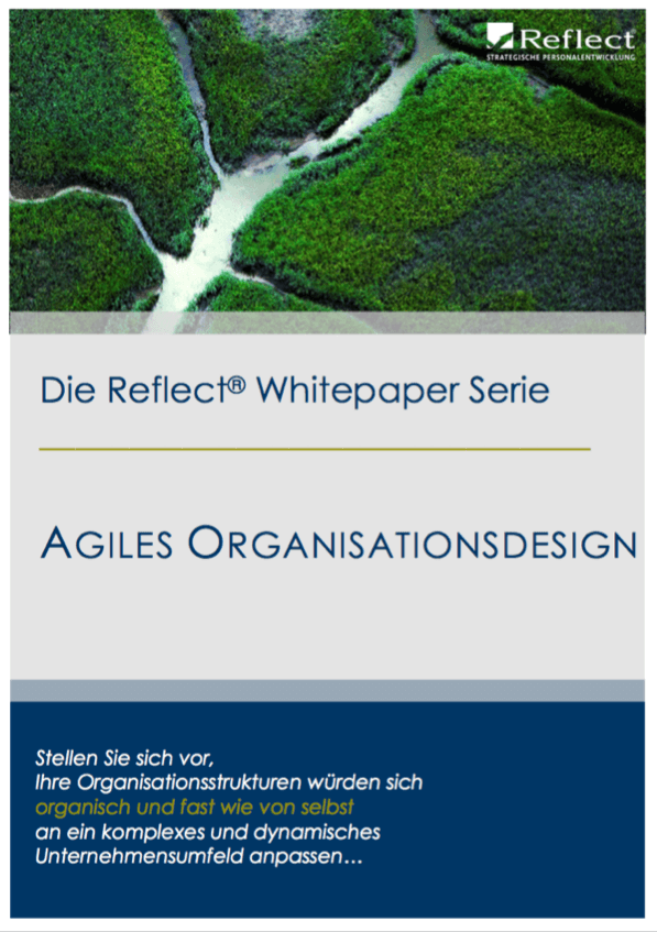 Whitepaper Agiles Organisationsdesign