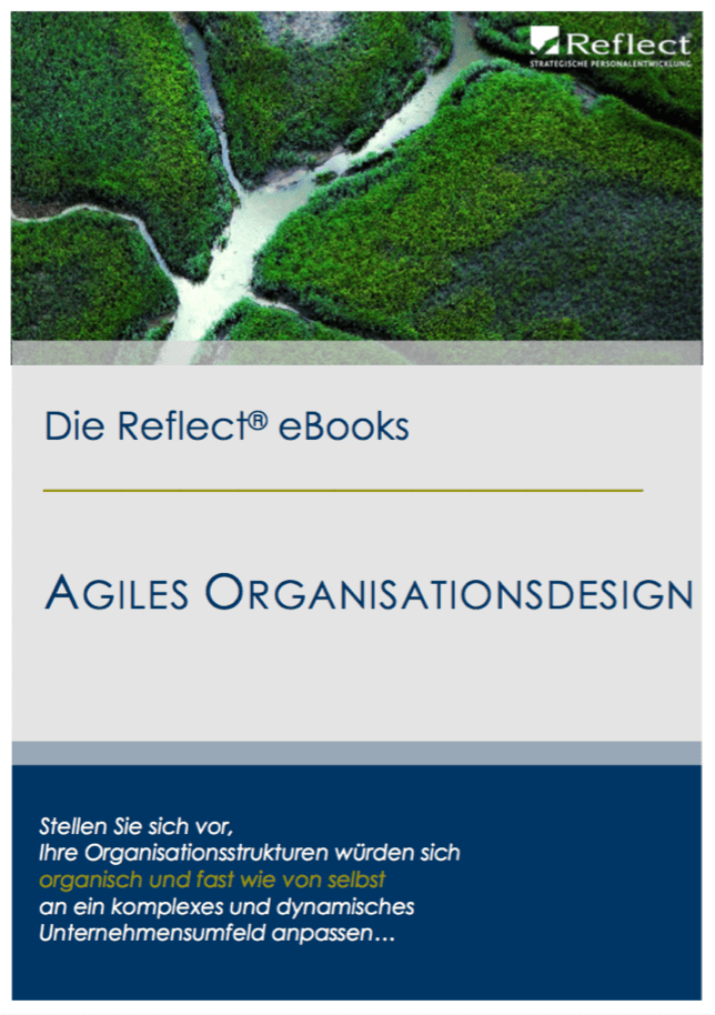 E-Book Agiles Organisationsdesign